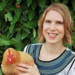 Is Raising Chickens Cheaper Than Buying Eggs?