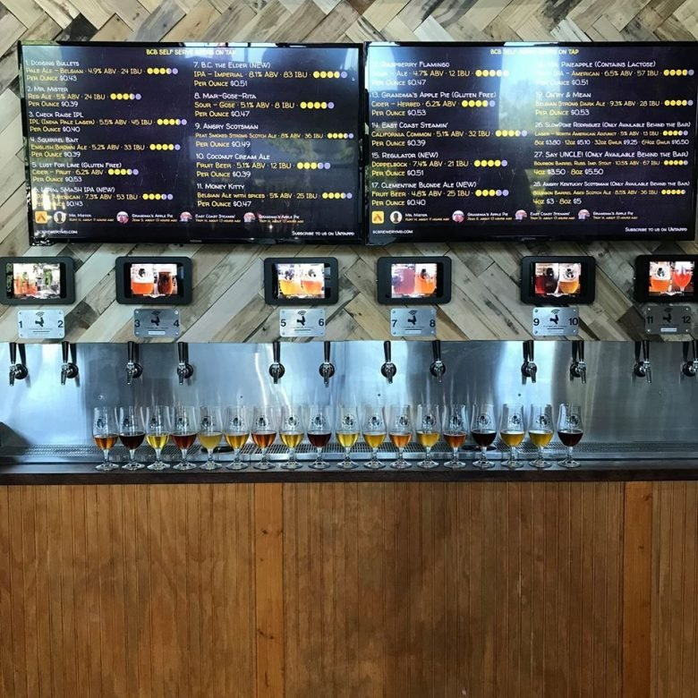 The best local breweries in each state