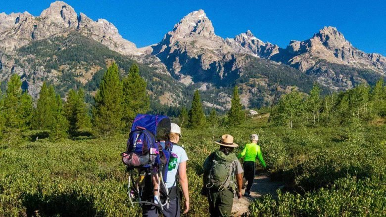 The best local hiking trails in each state