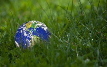 5 ways to make 2019 a greener year