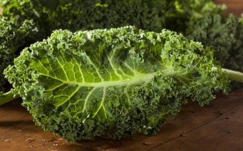How to fall in love with kale all over again