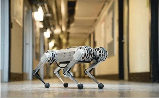 6 animal-like robots that could one day change the world