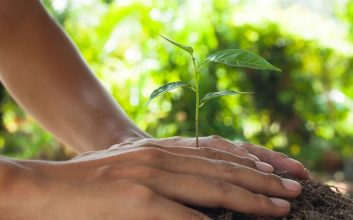 Everything you need to know about socially responsible investing