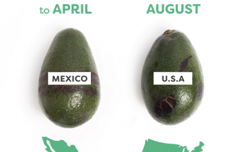 Love avocados? Here's when they're in peak season