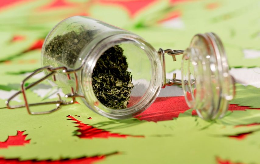 Medical marijuana laws in every state