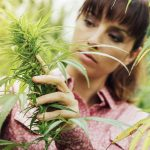 39 surprising facts you may not know about marijuana