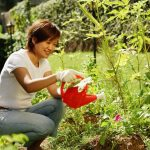 7 money-saving tricks to transition your garden from summer to fall