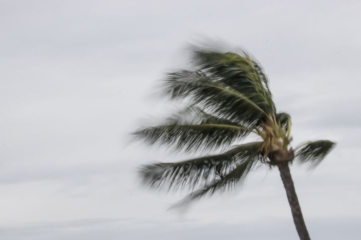 These are the states most at risk from hurricanes