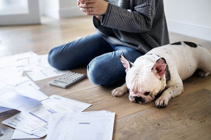 8 pet insurance myths you can't afford to believe