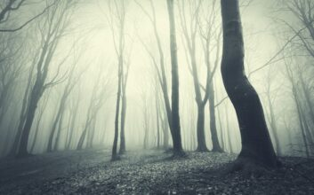 15 haunted hikes perfect for Halloween